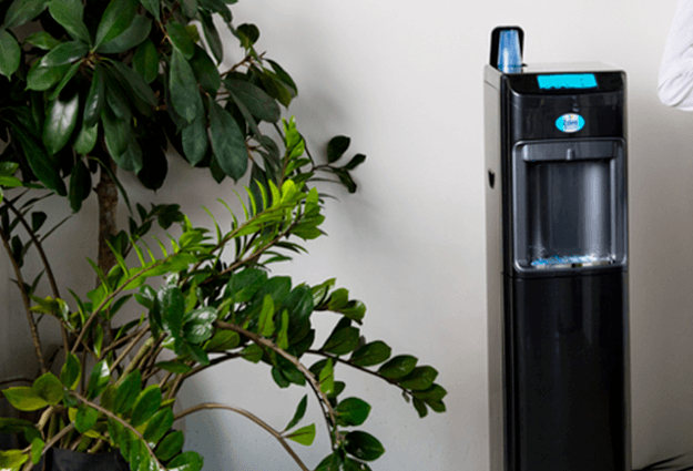 Mains-fed water coolers